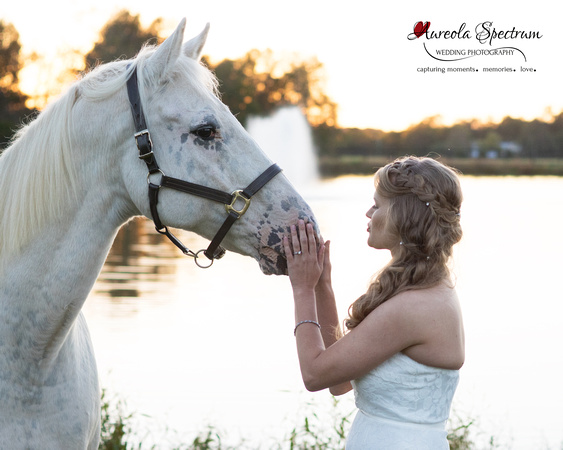 Bride with adorable horse in Monroe, NC