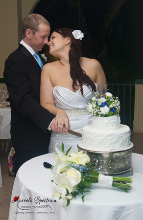 Newlyweds cut wedding cake lake lure, nc