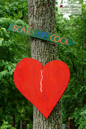 Scars are cool camp luck family camp 2016 decor.