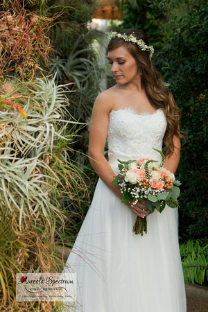 Beautiful bride stands under cacti archway.