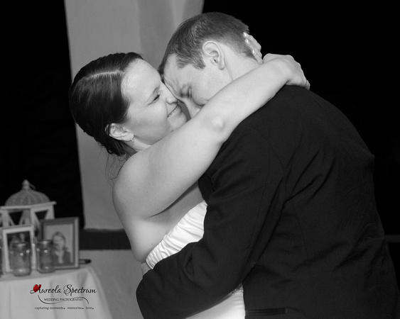 Bride and groom reception candid lake lure