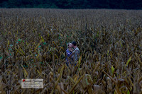 Epic engagement photo of couple kissing in corn field